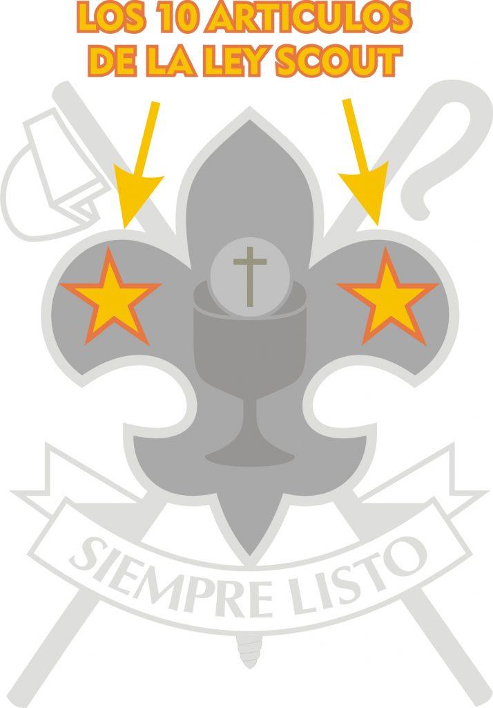 ley-scout-en-lis